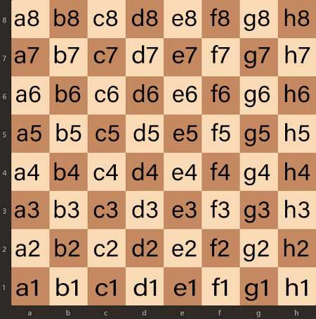 sistema algebraico